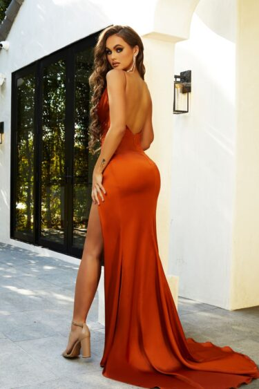 Hugo Gown BURNT ORANGE back
