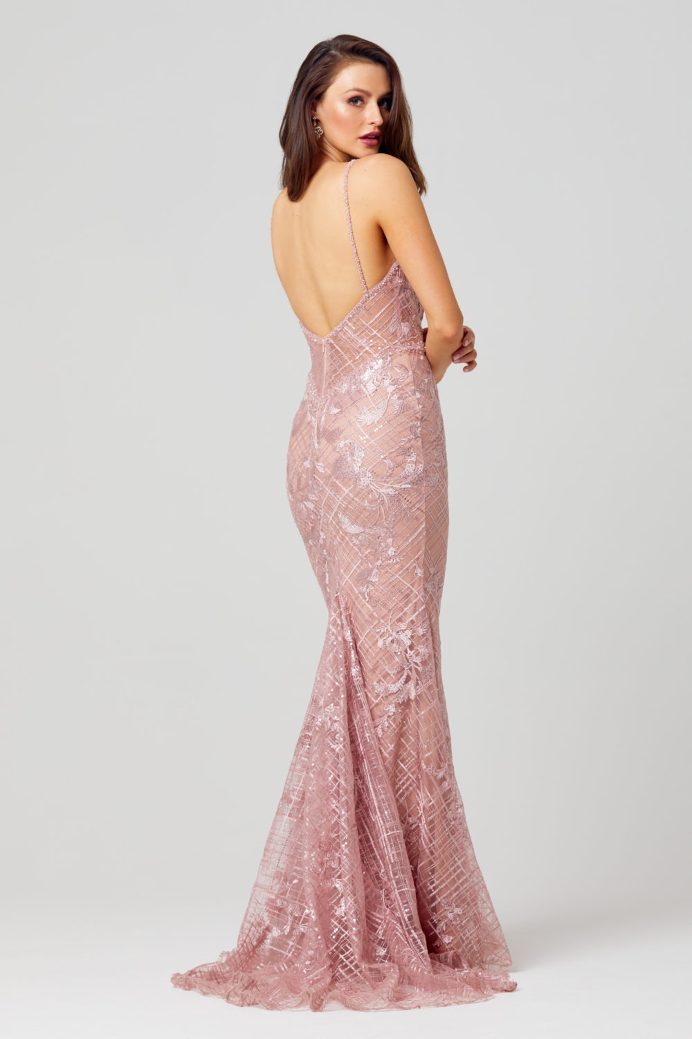 Reina Embroidered Evening Dress - TC269-Back